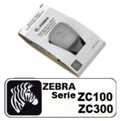 ruban couleur zebra ZC